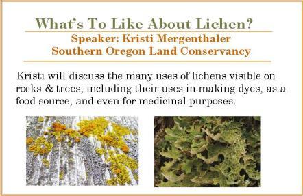 05 FEB 2_2015 Lichens color