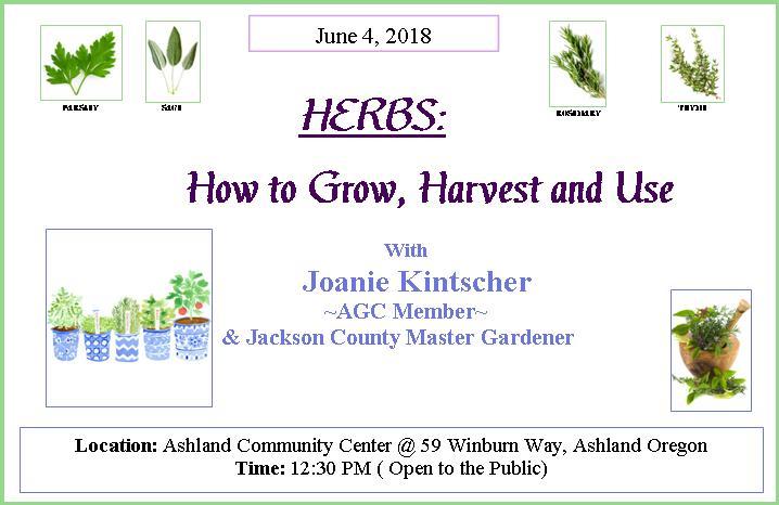 2018 06_June_herbs